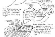 Balık Çzm