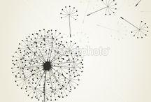 Graphic_dandelion