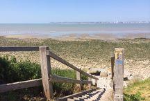 Plage de Cricqueboeuf entre Deauville et Honfleur / A seulement 400 mètres de notre hôtel, profitez d'une balade sur une plage sauvage !