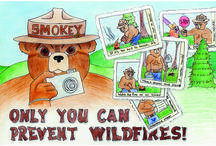 Smokey Bear / Woodsy Owl Posters / Poster contest sponsored by National Garden Clubs, Inc. in partnership with the U. S. Forest Service. / by National Garden Clubs, Inc.