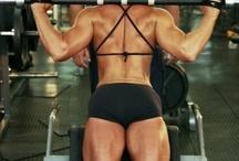 Todo musculo