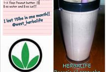 Herbalife Shakes / by Megan Scott