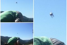 UFO's / Pics of UFO's