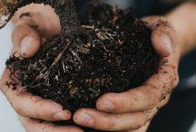 Duurzaam Ecologisch Milieuvriendelijk / Ga goed om met de natuur dan gaat de natuur goed om met jou