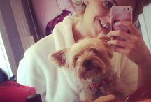 My Puppy Pooch... / Annie Keery... Yorkshire Terrier.. ❤️