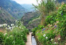 Madeira places