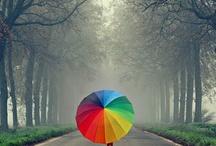 Rainbow / by Jennie Tracy