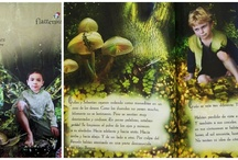 Mushroom King Fairy-themed Personalized Book