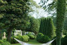 gardening / by leisa oldreive
