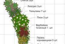 Ландшафтный дизайн / Сады, дорожки, клумбы, планировка