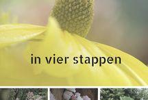buitenskamers tuinontwerpen - blogs / tuinontwerpen, tuinontwerp, tuinontwerp kleine tuin, tuinontwerp grote tuin