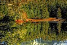 - Travel - Alaska