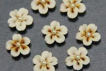 Biscuit Flores
