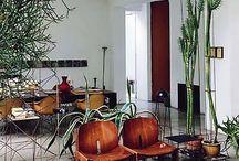 >> Future Home<< / by Avital Veltz // lili loft