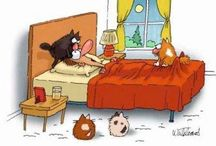 Funny cat things