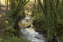 O río Sar / Fotografías do río Sar e construccións no seu curso, antigas e contemporáneas.