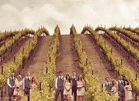 Barn/Vineyard Wedding