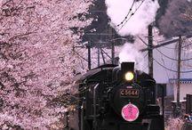蒸気機関車 Steam Locomotive