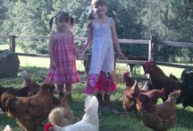 family weekends away near sydney / farmstay nsw; large group accommodation new; family weekends away near sydney and newcastle
