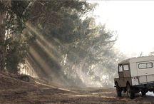 dream jeep