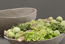 Concrete pots etc / Make your own garden planters.