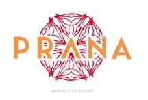 """Prana Condos """"Where Life Begins"""". Tulum / Prana's condos offer the ideal living space to enjoy Aldea Zama and Tulum, with architecture that offers harmony with the areas mystical nature and the comfort of world-class amenities.  Prana is where life begins. Tulum Real Estate Area."""