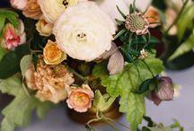 Flower Shop Stuff / by Tammy Oliver