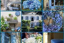 hydrangea 2 / visit also my other boards-- hydrangea and hydrangea: home design-- if you like! / by Ina Korevaar