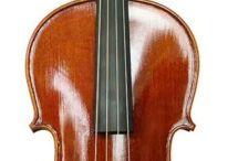 Vykoupíme violu / Viola (zastarale bráč) je strunný smyčcový hudební nástroj se čtyřmi strunami laděnými v čistých kvintách: c, g, d¹, a¹.  V orchestru a smyčcových souborech slouží jako střední altový hlas, přičemž vyšší hlasy hrají housle a nižší violoncella a kontrabasy. Převzato z wikipedia.org