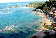 Travel - Bahia
