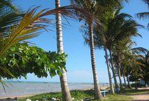 Cumuru Magical Tour / Agencia de Receptivo em Cumuruxatiba, Sul da Bahia