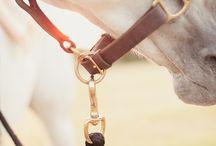Hästprodukter