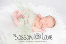 Newborn Baby Portraits / Gorgeous newborn baby photos taken within the first 2 weeks of babies arrival, by Nicola Mowatt at Blossom Lane Photography Based in Bury, snapping away in Lancashire, Manchester & Cheshire
