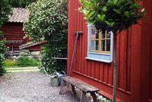 garden | / Drömmar om en lummig, grön trädgård / Dreams about a lummy green garden