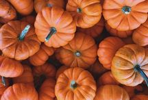 autumn. / autumn | fall | autumn decor | autumn inspo | autumn inspiration