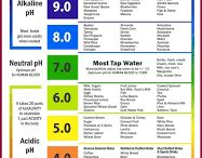 Alkaline dis~ease Prevention / What alkaline diets are all about. A guide through the confusion