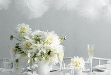 Party Decor and Supplies I Love / by Heather Burris