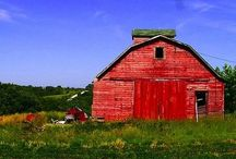 Barns / I love barns! / by Luci C.