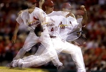 St. Louis Cardinals / by Lisa Harris