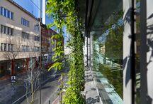 Business centrum Wallenrod / Hlavným motívom architektúry tohto komorného biznis centra je unikátna zdvojená fasáda, v ktorej rastie popínavá zeleň. Tento vertikálny park spríjemní nielen pracovné prostredie v kanceláriách, ale aj celú ulicu.