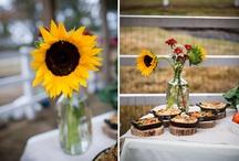 Bam bam's wedding / by Erin Dockstader
