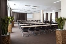 A place to combine work and play  / When you need to have a working meeting with several colleagues or business partners, then at least meet at a place they will feel good. Ponteo - Activity Park offers fully equipped conference halls and rooms with capacity for up to 150 people.