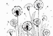 Sketchbook, rysunki