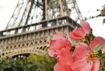 PARIS / by Elsa Franco