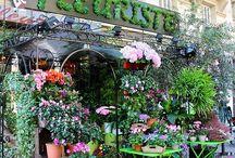 цветочные магазины