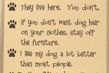Love my dog / by Debbie Montano-Marvin
