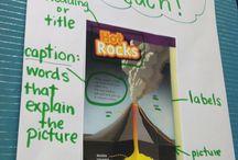 Non-fiction literacy / by Ann Haddock