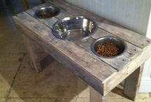 Dogs feeding stand