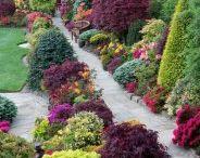 jardin a l anglaise et nature
