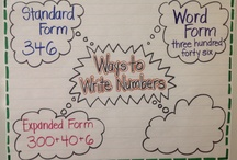 School - Anchor Charts / by Meghan Kathleen